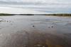 The Moose River at Moose River Crossing.