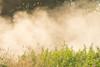 Road dust on Ferguson Road.