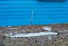 Snow remaining in backyard at Keewaytinok Native Legal Services 2015 May 14th.