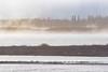 Looking across the Moose River through morning fog. Sandbar in foreground. Lightroom dehaze 75.