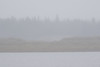 Dreary morning, light rain looking across the Moose River from Moosonee.