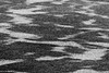 Patterns in the Moose River. Black and White.