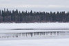 Reflections of trees in surace water on the Moose River.