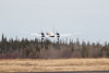 Heat distortion blurs Air Creebec Cargo C-FLIY HS748 as it takes off at Moosonee.