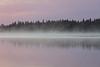 Fog drifts past Butler Island.
