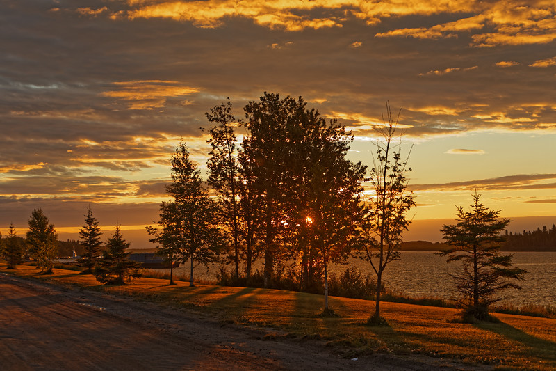 Trees along the Moose River at sunrise in Moosonee 2017 August 9th.