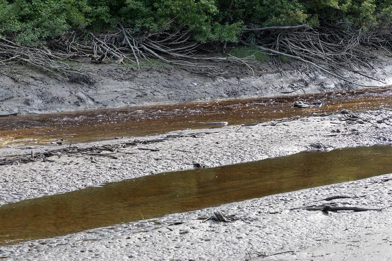 Store Creek at low tide.