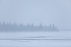 South end of Butler Island across the Moose River from Moosonee during moderate snowfall.