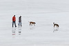 Two dogs with two people walking on the Moose River ice.