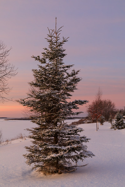 Moose River shoreline in Moosonee before sunrise looking up the river.