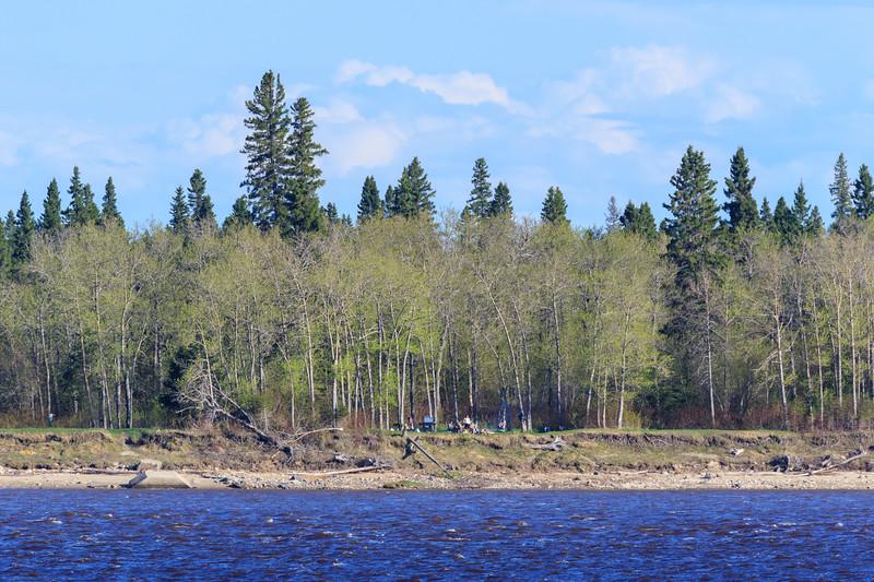 Tidewater Park on Charles Island