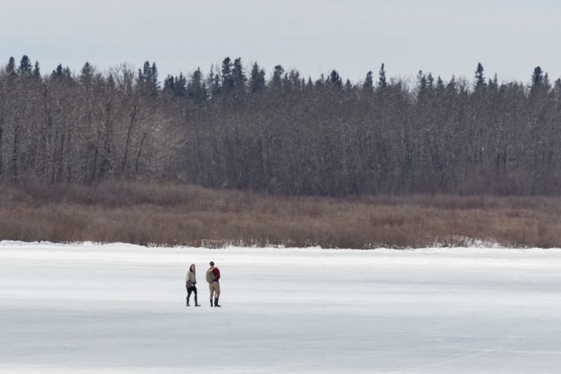 People walking on the Moose River 2017 April 22nd.