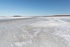 The ice of the Moose River, Butler Island in the distance.