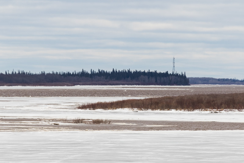 Looking up the Moose River towards hydro tower 1215 noon 2017 April 28th.