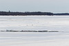 Broken ice on the Moose River.