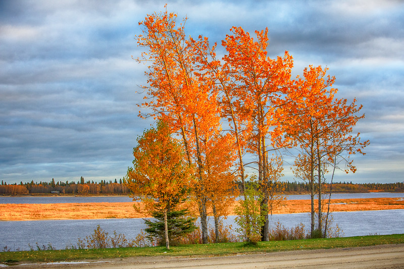 Bright colours along the Moose River in early evening. 2017 October 15th. HDR efx bright tone map.