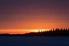 Almost sunrise looking down the Moose River 2017 April 9th.