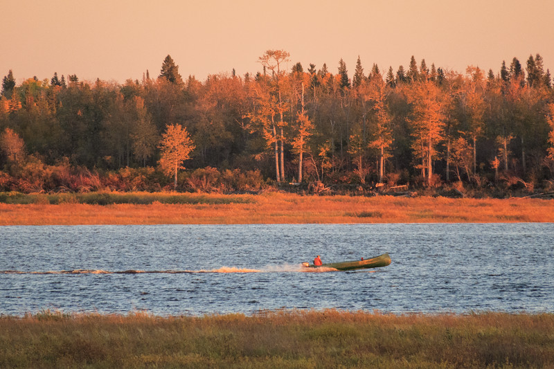 Looking across the Moose River late afternoon. Canoe heading up river.