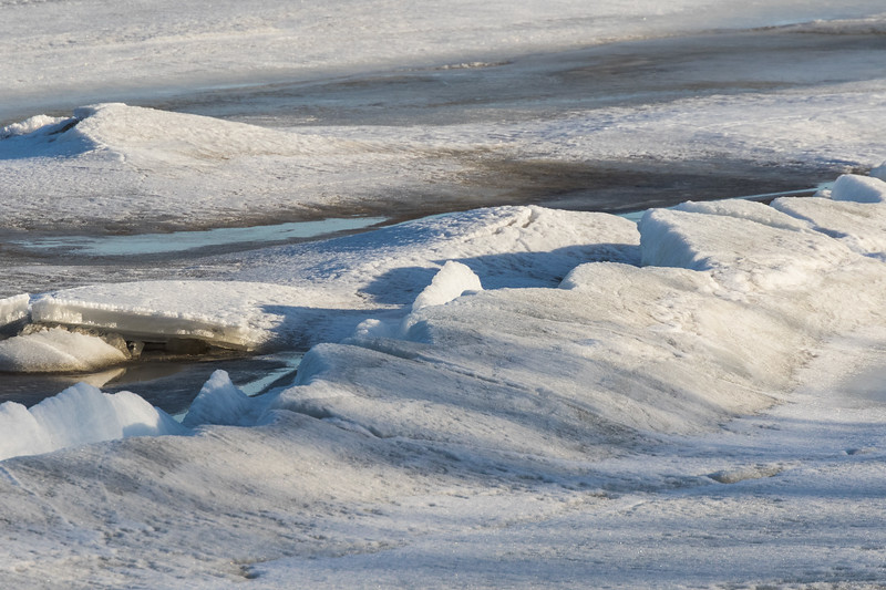 Shadows of trees on broken ice along the edge of the Moose River at Moosonee.
