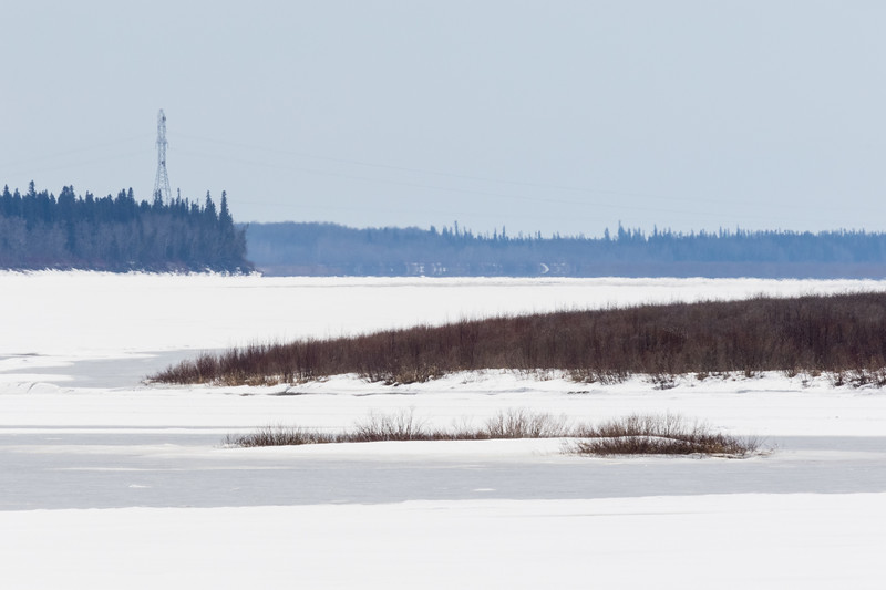 Looking up the Moose River towards hydro tower 2017 April 20th.