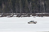 Truck taxi on the Moose River in front of Butler Island 2017 April 6th.