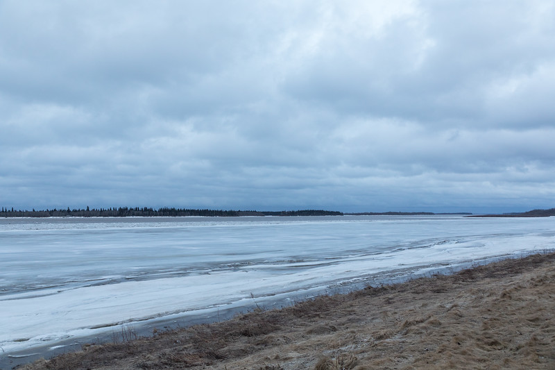 Looking up the Mooose River in Moosonee. Butler Island in the distance. Ice along the Moosonee shoreline intact. 610 am 2017 April 29th.