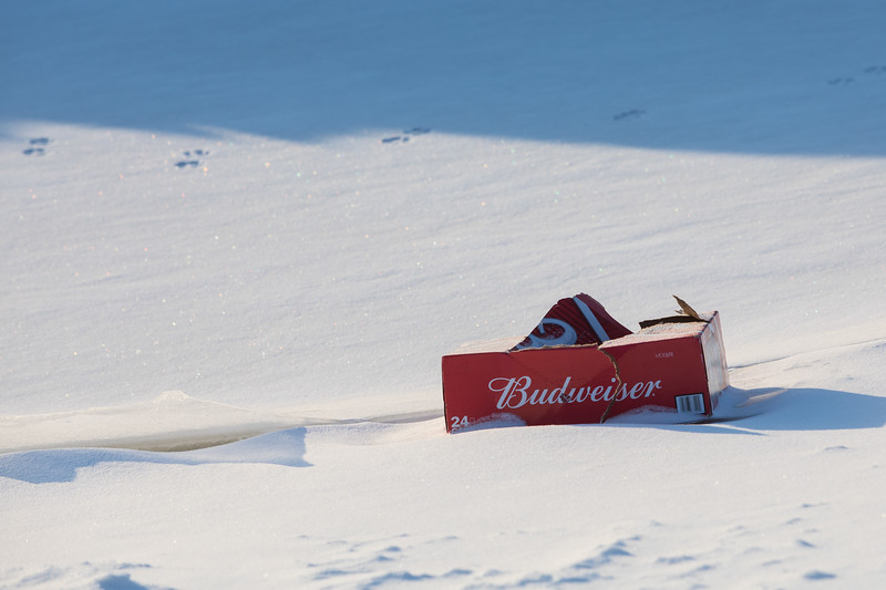 Budweiser along the Moose River.
