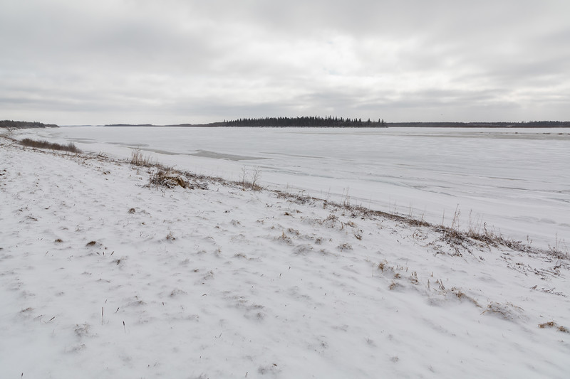 Moose River shoreline looking down river and towards Butler Island 2017 April 23rd. Fresh snow.