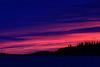 North end of Butler Island befoe sunrise. Specks are birds