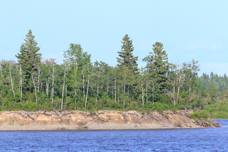 South end of Butler Island in the Moose River at Moosonee.