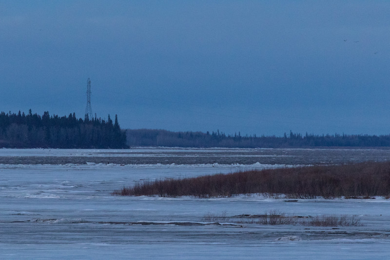 View up the Moose River towards hydro tower. Some apparently open water and piles of ice.