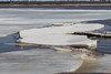 Shore ice in various sizes heads down river.