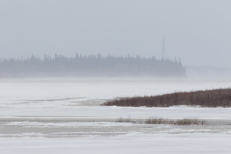 Looking up the Moose River towards hydro tower. 2017 April 23rd.