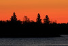 Trees in silhouette at the south end of Butler Island before sunrise. 2017 October 10th.