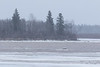 South end of Butler Island. 630 am 2017 April 29th. Open water surrounded on two sides by ice.