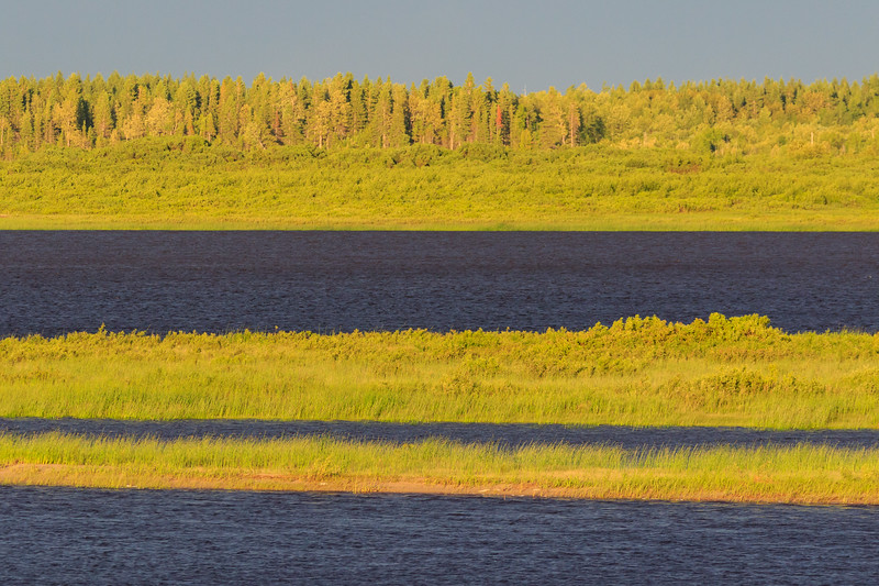 Intense green colour across the Moose River from Moosonee.
