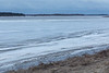 610 am 2017 April 29th shore ice mostly intact, open water beyond. Looking up and across the Moose River.