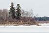 View of the south end of Butler Island from ice level. Note distortion caused by heat waves close to the ice.