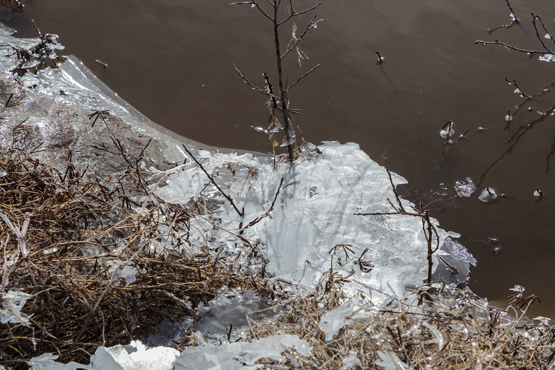 Thin sheet of ice stranded as water level goes down.