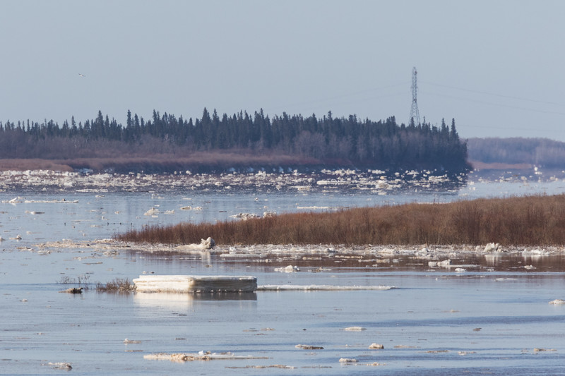 looking up the Moose River towards hydro tower.