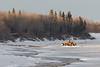 Loader on the Moose River arriving in Moosonee.