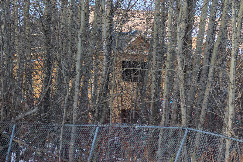 New housing for Ontario Government staff through the trees.