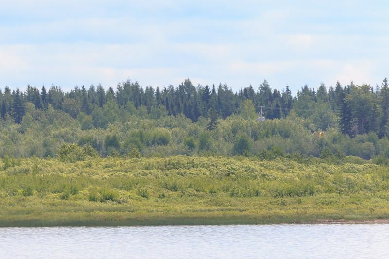 Moose Factory Island.