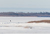 Snowmobile heads up the river.