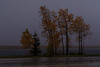 Sudden downpour on a fall evening in Moosonee.
