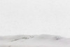 Not a lot of visibility. Looking across the Moose River from behind snowbank in heavy snow fall. Lightroom dehaze 80.