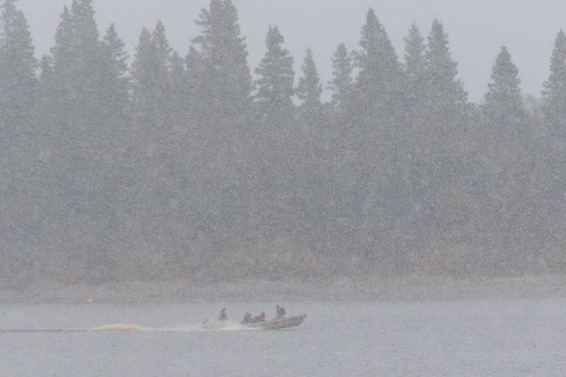 Canoe on the Moose River with Butler Island in the background. First snow of the season 2017 October 15th.