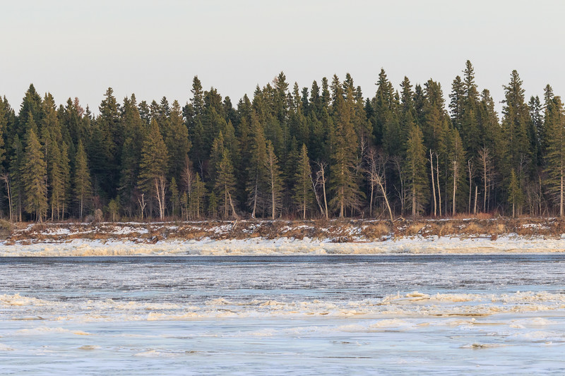 Ice and water in front of Butler Island 2017 November 14th.