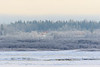 Looking across to Moose Factory Island on a misty morning 2017 December 3rd.