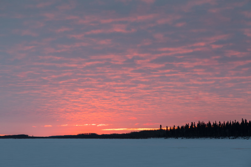 Looking down the Moose River just before sunrise 2017 April 16th.